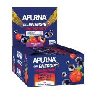 Lotto di 24 gel Apurna Energy ribes nero al guaranà - 35g